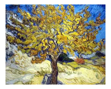 Van+Gogh+tree