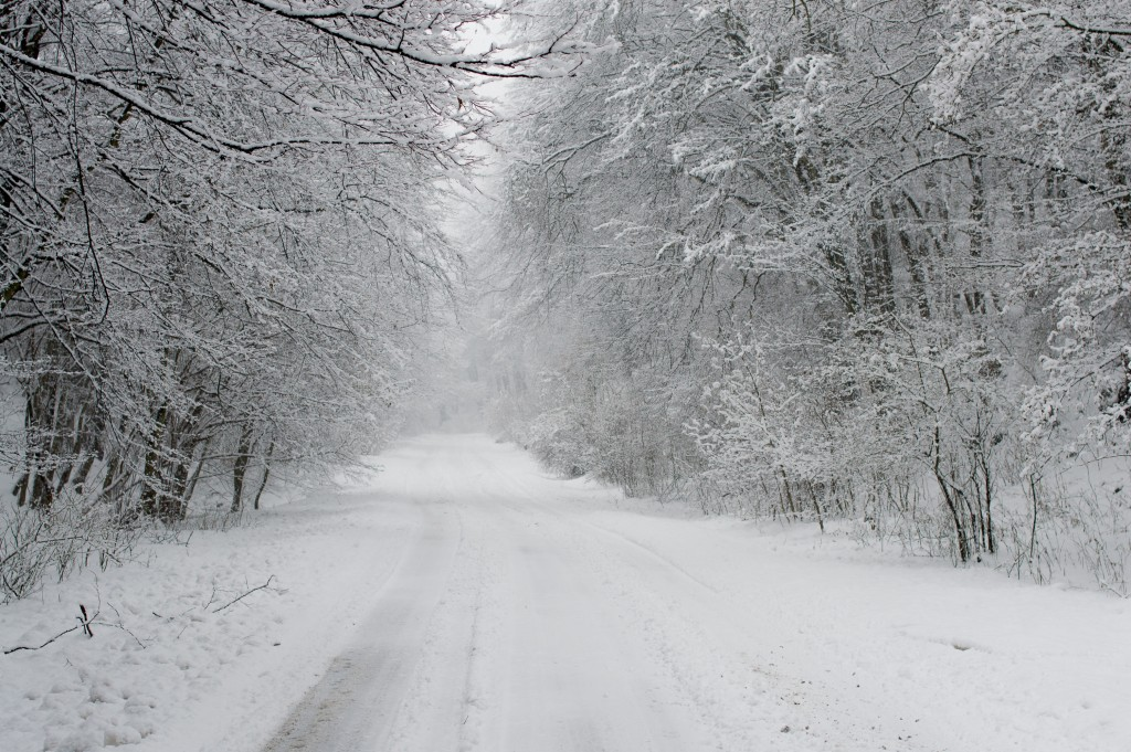 Empty snow covered road in winter landscape, Winter Driving - Winter Road