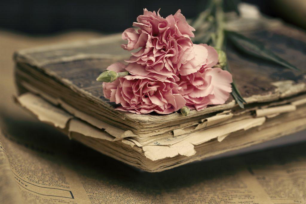 Eski Kitap ve Karanfil