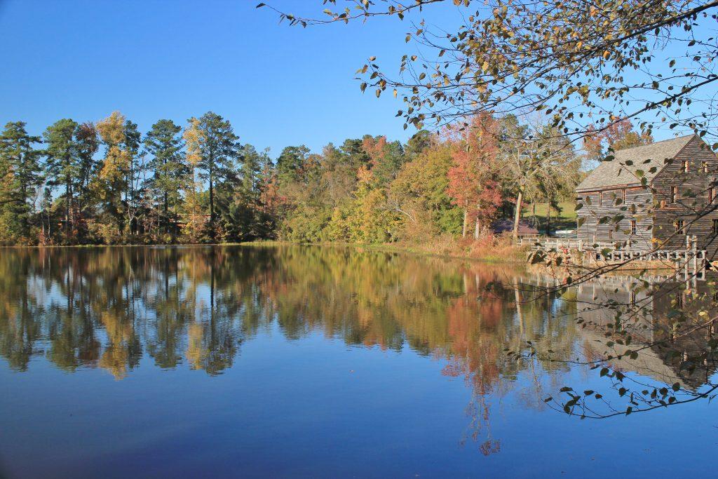 Yates Mill Pond, Raleigh, North Carolina